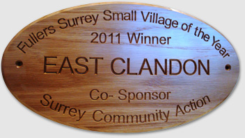Surrey Small Village of the Year 2011